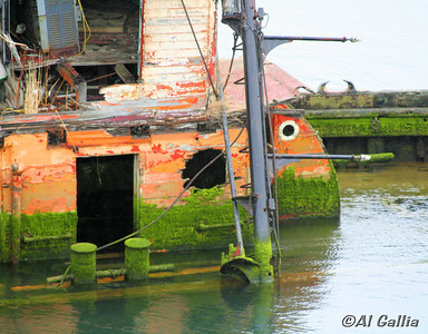"@Al Gallia: ""Last Resting Place""; Old sunken boat, the Mary D. Hume, at final rest on Rogue River at Gold Beach, Oregon."