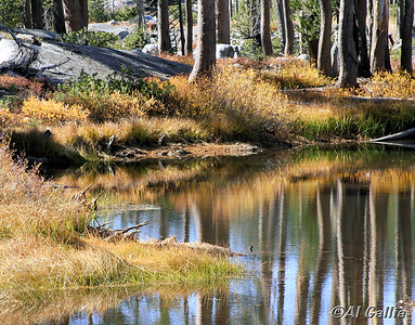 "©Al Gallia; ""Tranquil Moment""; Small pond in Sierra Nevada mountains near Donner Pass and Truckee, California."