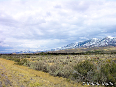 """©Bobbie Gallia; """"Early Snow in Idaho""""; US30 north after leaving Montpelier, Idaho."""