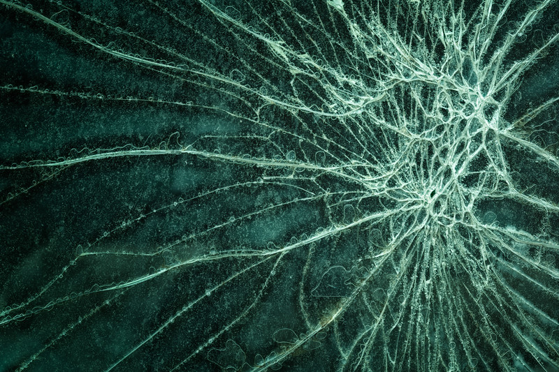 Spider Web Glass