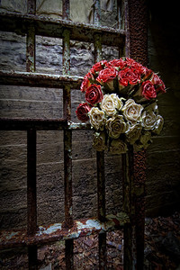 Gates and Roses