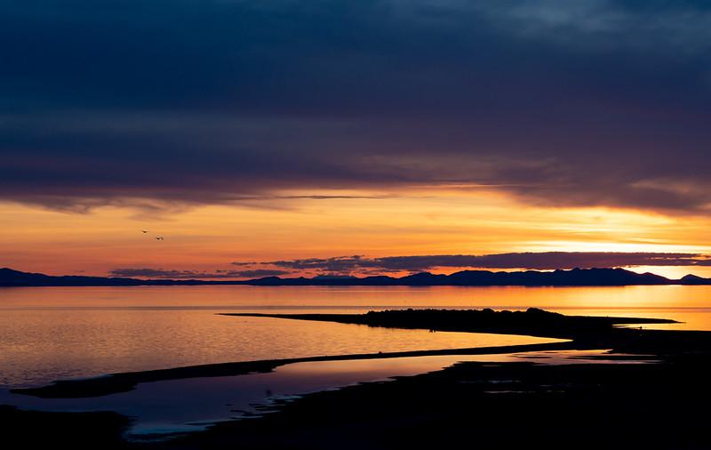 thompson_lisa_ladyfinger_sunset