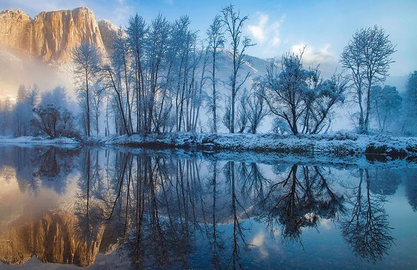 Costa_Cindy_Morning_Reflection