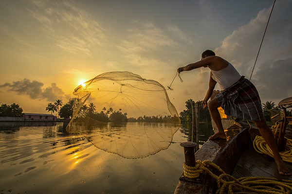 Alleppey Backwaters Casting the net