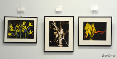 """Scanner Art"" - Left to right:  Spring is Here, Maize and Bronze"