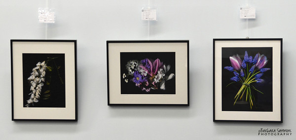 """Scanner Art"" - Left to right:  Wisteria Magic, Spring Bouquet and Spring Purples"