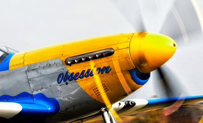 "Catalog #5003 - ""Obsession"" - P-51 Mustang"