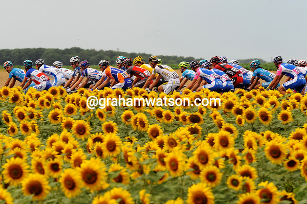THE PELOTON ON STAGE SIX OF THE 2010 TOUR DE FRANCE