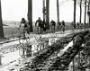 THE TOUR OF FLANDERS IN 1982