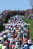 The Amstel Gold peloton climbs the Gulpenerberg in 2010