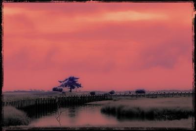 Sherbet Sky