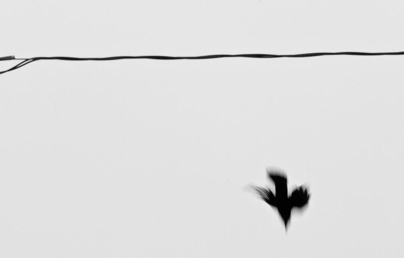 Slow Dive