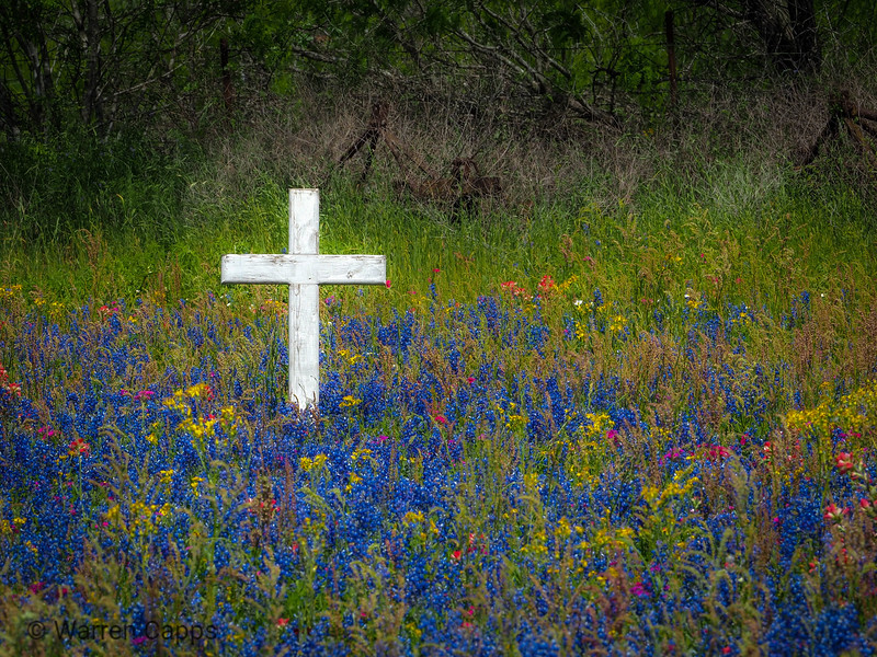 Texas Easter Morning