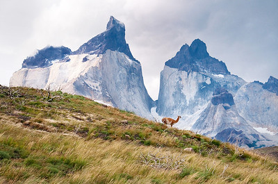 Charlotte_Brennand-Torres_del_Paine