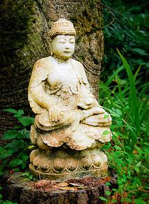 Gretchen_Faulk-Green_Gulch_Buddha