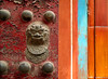 Terry_Madsen-Lion_Door