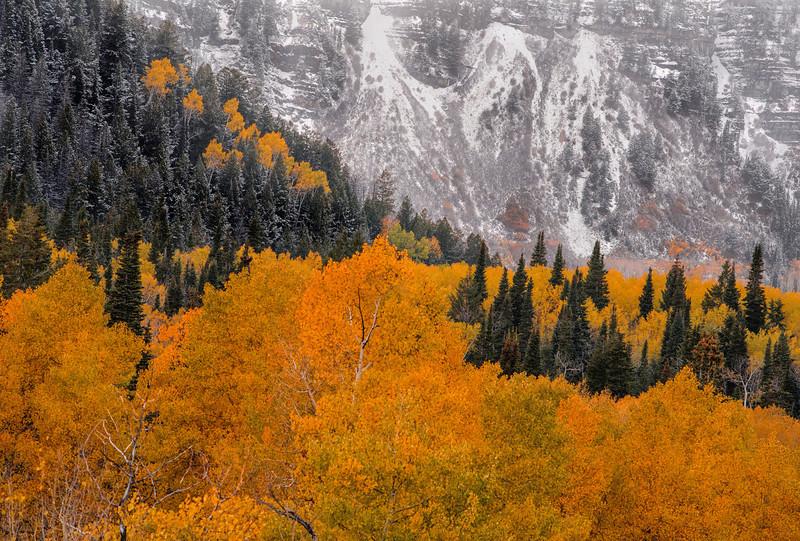 dave_block-alpine_fall_snow