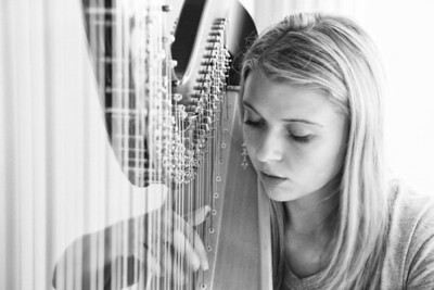 doug_powell-the_harpist