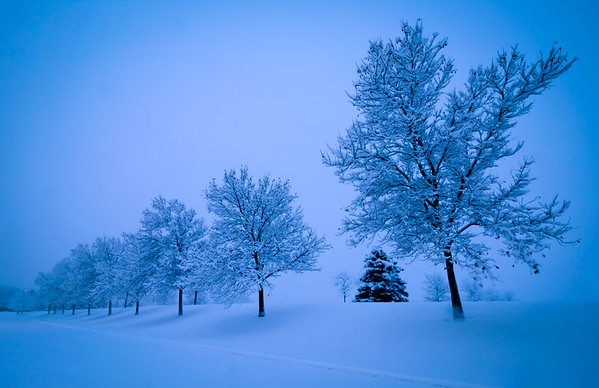 Larry_Whittaker-Dusk Snow Scene