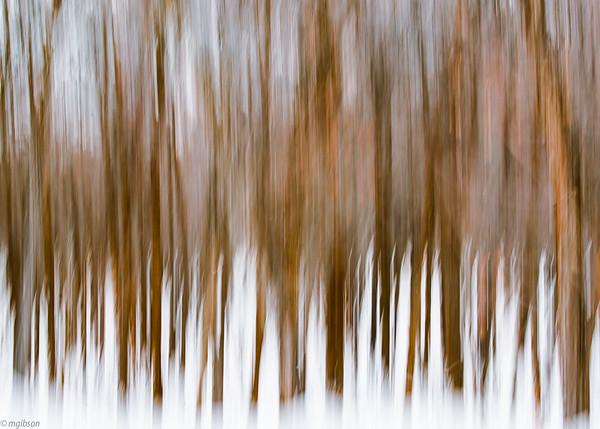 Mark_Gibson-Motion
