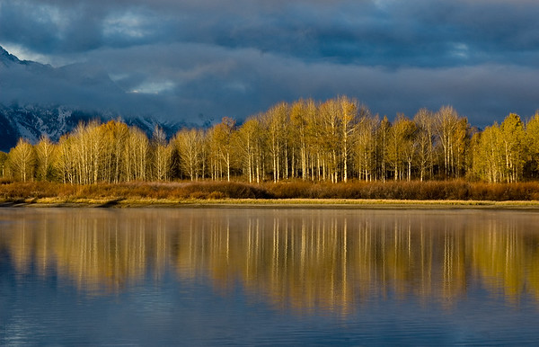 Steve_Wygant-Mirrored_Aspen