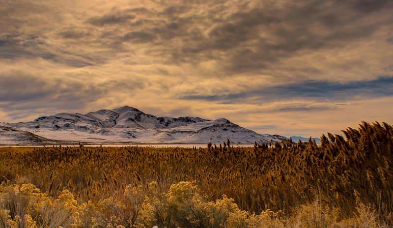 larry_whittaker_stormy day on antelope island