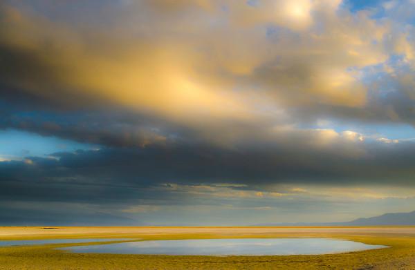 ChrisMiller-Saltpuddle