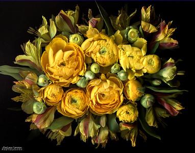 Catalog #3001 - Shades of Yellow - Ranunculus and Alstroemeria