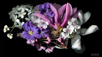 Catalog #3008 - Spring Bouquet - Jane Magnolia, Cherry Blossoms, Violets and Anemone