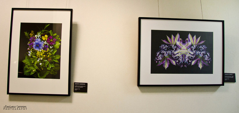 """Mom's Garden"" and ""Twice as Nice""<br /> Hallway - around corner from main gallery"