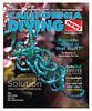 1501 Cover:  Spiralis chaetomorpha, Catalina, California.