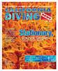 1306 Cover:  Orange Puffball Sponge, Santa Cruz, California.