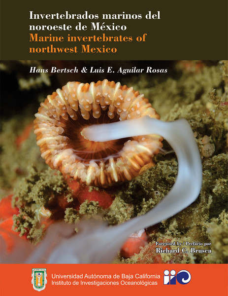 """Marine Invertebrates of Northwest Mexico""<br /> Cover photo by Kevin Lee (spawning cup coral)<br /> Authors: Hans Bertsch & Luis E. Aguilar Rosas<br /> Universidad Autonoma de Baja California, Institute of Oceanography<br /> Ensenada, Mexico"