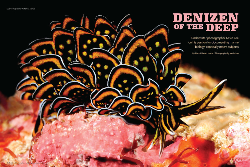 """""""Denizen of the Deep""""<br /> By Mark Edward Harris / Photography By Kevin Lee<br /> August 2018"""