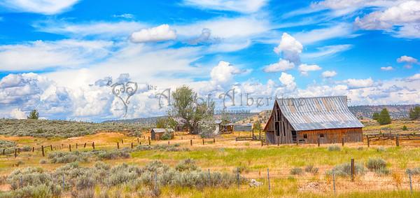 Farm House - Summer Landscape