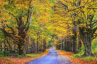 Connecticut Fall - Autumn Landscape