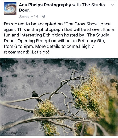 "The Studio Door, ""The Crow Show"". February to March 2015."