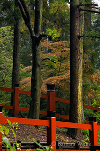 Red Fence at Nikko
