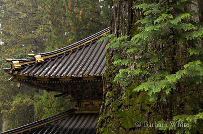 Rooftops At Nikko