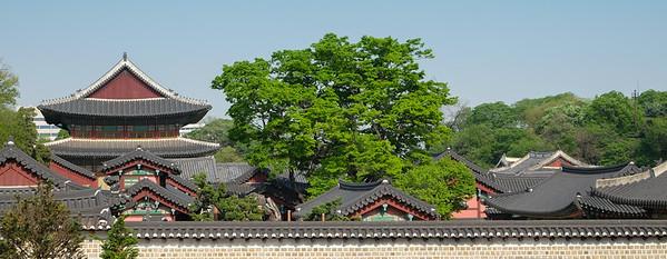Seoul | Changdeokgung Palace