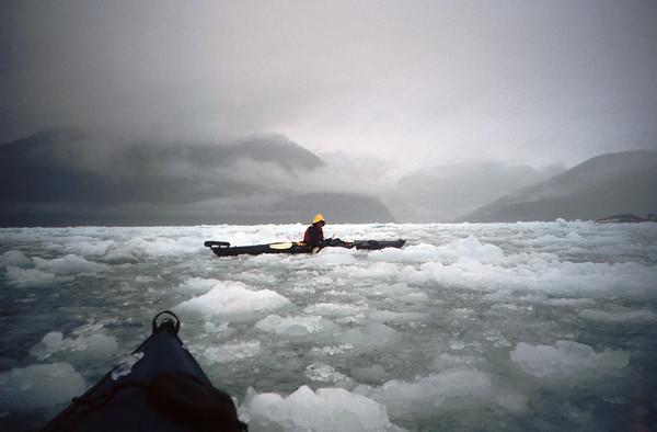 Fiordo Calvo, Magallanes. Expedición Seakayak , 2000