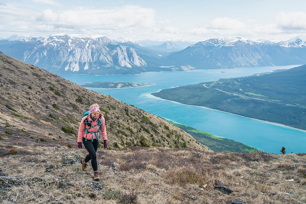 Hiking Above Carcross, Yukon 2018