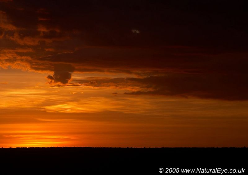 Sunset in the Lewa Wildlife Conservancy