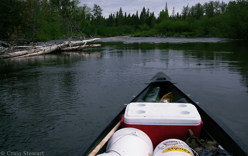 Second day, just after putting out from the camp site.  Nothing special, just a nice day on the river.