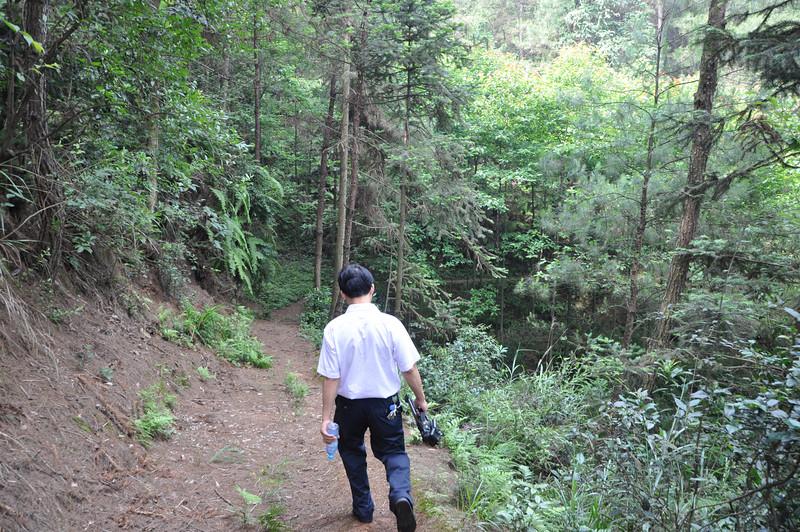 A short downhill jog in the Fun Happy Path of Doom...