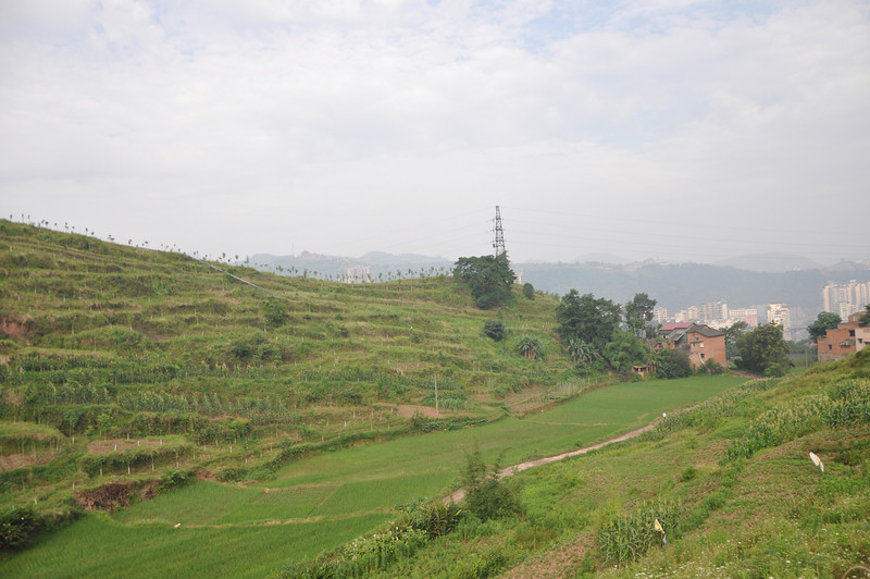 Heading back to Qijiang from the fossil wood site; this is a view from the farmer's house.  Qijiang's outskirts are visible in the background on the right side of the photo.
