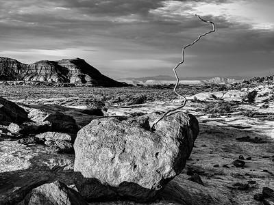 Root Rock