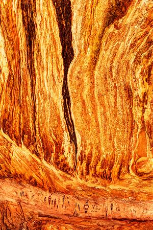 Alien Indian Cave Panel