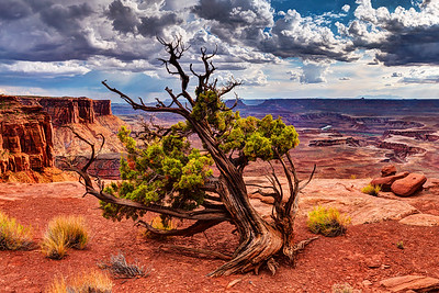 Baroque Canyonlands