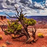 Baroque Canyonlands